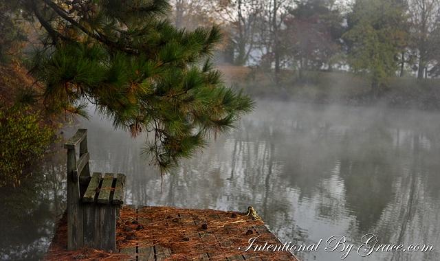 Scenery Morning-2