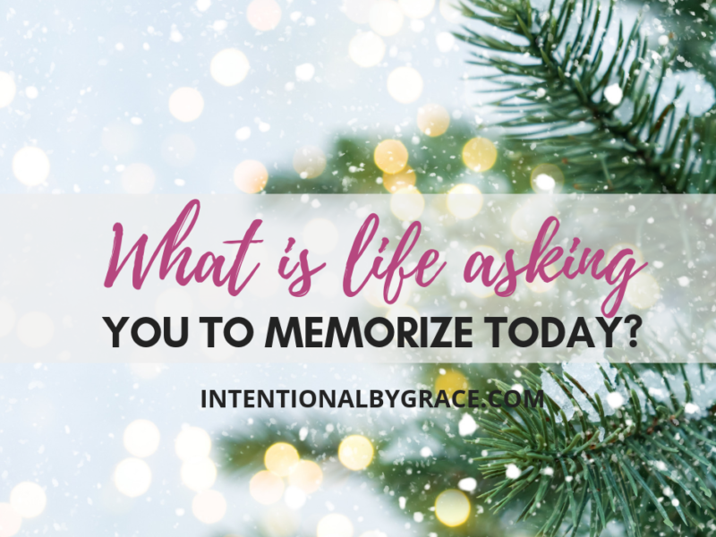 What is life asking you to memorize today? Christmas devotional thoughts for your day.