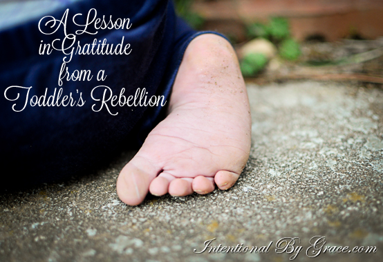 a lesson in gratitude from a toddler's rebellion