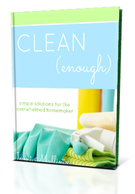 Clean Enough: Simple Solutions for the Overwhelmed Homemaker