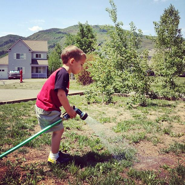 toddler watering the lawn