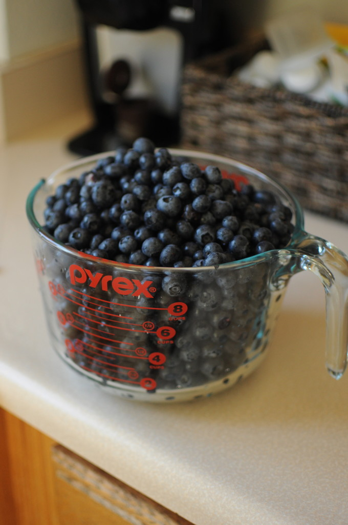 blueberries for blueberry jam