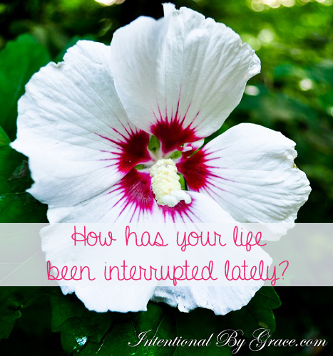 How Has Your Life Been Interrupted Lately?