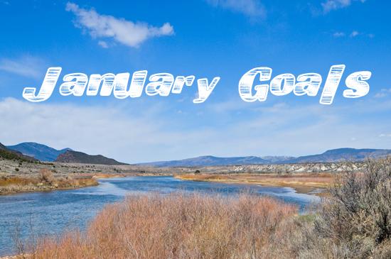 january goals