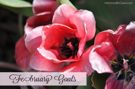 february goals_edited-1