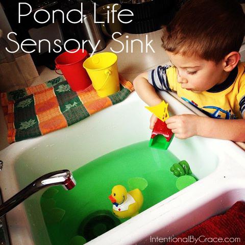 pond life sensory sink