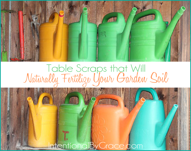 Table Scraps that Will Naturally Fertilize Your Garden Soil | IntentionalByGrace.com
