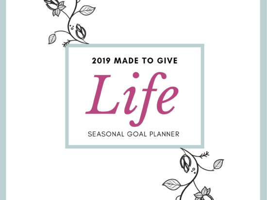 Made to Give Life Seasonal Goal Planner- get ready for planning and preparing your Fall with the help of this seasonal goal planner!