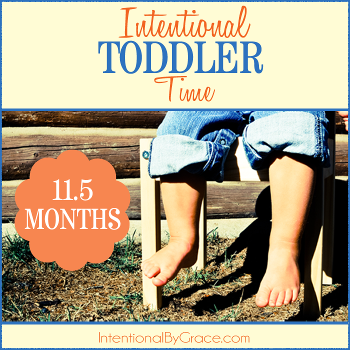 A round up of intentional toddler time activities for an 11.5 month old.