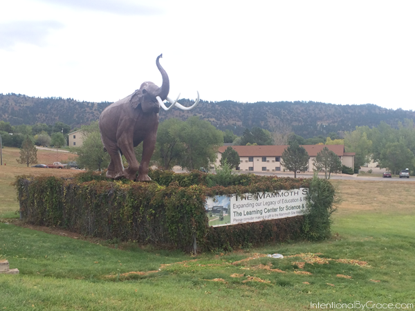 wooly mammoth site entrance