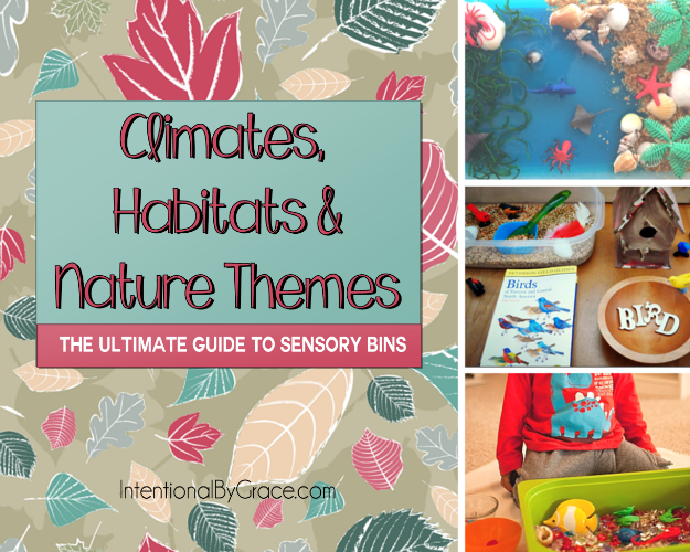 Climates, Habitats and Nature Themes (The Ultimate Guide to Sensory Bins) - Intentional By Grace
