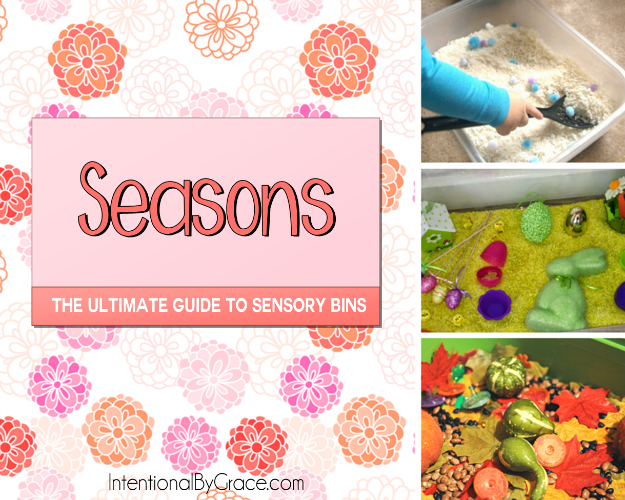 Seasons (The Ultimate Guide to Sensory Bins) - Intentional By Grace