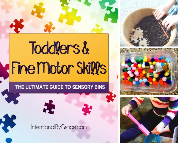 Toddlers and Fine Motor Skills (The Ultimate Guide to Sensory Bins) - Intentional By Grace