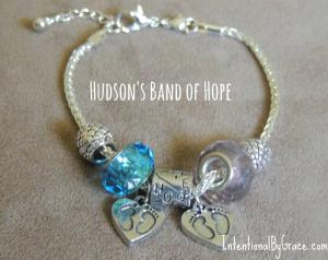 hudsons band of hope