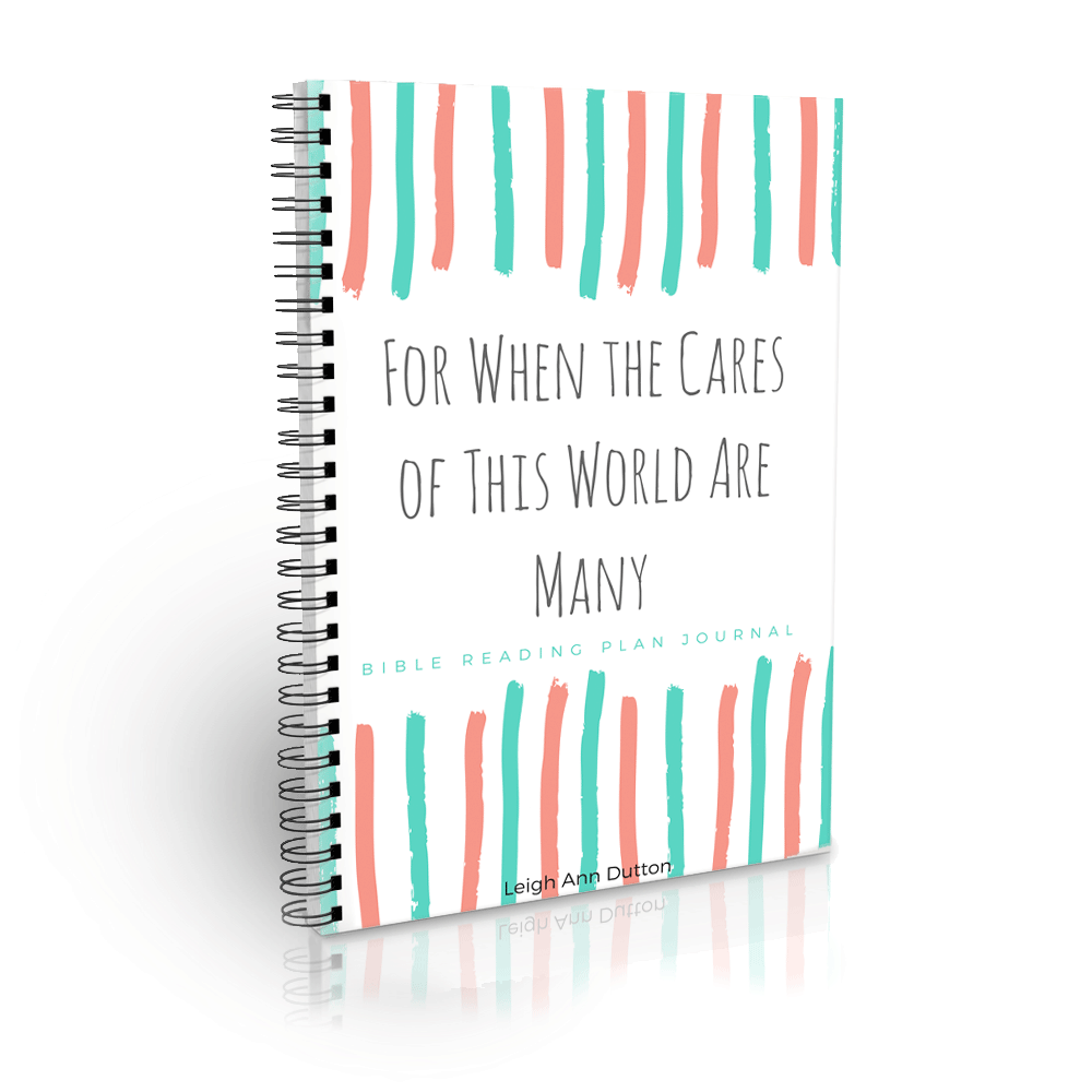 Cares of this World Bible Reading Plan Journal