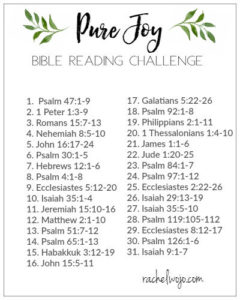graphic regarding Chronological Bible Reading Plan Printable named Bible Looking through Programs: Annually, Topical, Scripture Crafting