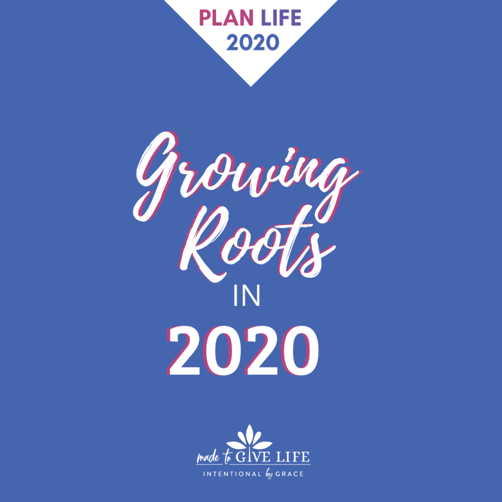 Choosing what goals you want to take root in 20202. A Christian perspective on goal planning.