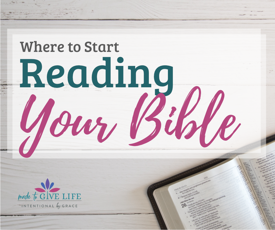 If you're just getting started studying God's Word, below is my recommended order for reading your Bible and studying the scriptures.| IntentionalByGrace.com