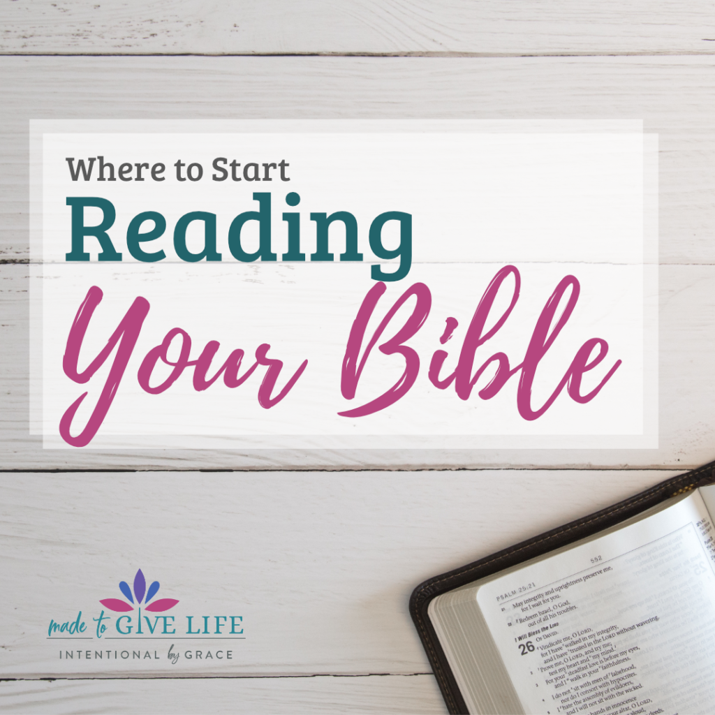 Get Started reading the Bible with these Bible Reading Plans and the order I recommend studying the books of the Bible. | IntentionalByGrace.com